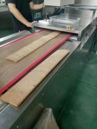 微波竹筷干燥殺菌設備
