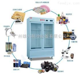 XD-800HWG四平恒溫恒濕柜 古董存放柜 重要文件儲存柜
