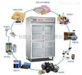 XD-1000HWG遼源恒溫恒濕柜/珠寶首飾儲存柜