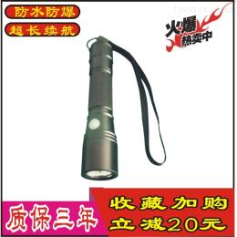 BAD202BAD202微型釣魚燈徒步強光防爆LED小手電筒