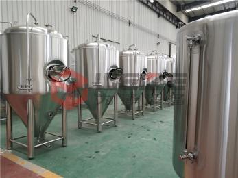 WZ-1000L3000L精酿啤酒设备厂家