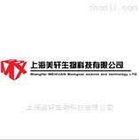 SMMC-7721/S人肝癌索拉非尼耐药细胞株