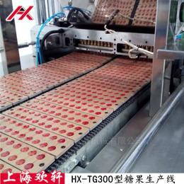 上海欢轩HX-TG300型硬糖浇注机 糖果生产线