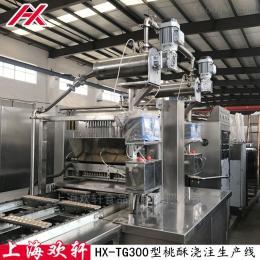 HX-TG300型全自動凝膠軟糖澆注生產線 小熊軟糖機