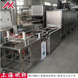 HX-TG50小型軟糖澆注生產線 糖果設備 50型糖果機