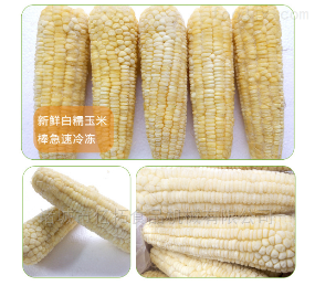 YT—800速冻鲜玉米加工设备