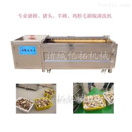 YT—1500买猪蹄清洗机设备