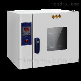 DHG恒温电热干燥箱实验室设备广州厂家直销