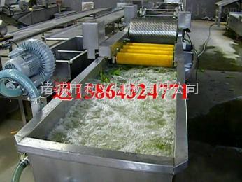 HY-06白菜清洗设备