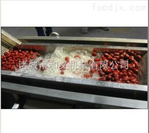 HY-2红枣清洗设备