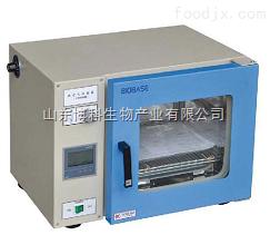 BGRX-54干热消毒箱