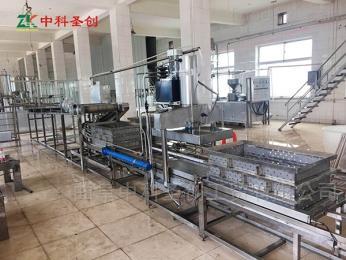 DP-時產100斤~600斤大型豆腐皮機商用,千張干豆腐生產線廠家