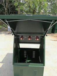 DFW-35/63035KV高压电缆分接箱一进一出带六氟化硫开关