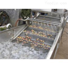 ww-00網帶噴淋清洗機、果蔬清洗輸送機