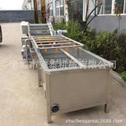 AT800小黄瓜清洗机 黄瓜咸菜加工机械