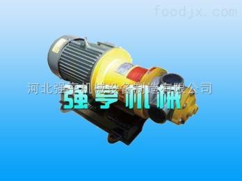 qh玉樹強亨無泄漏不銹鋼磁力高粘度泵噪音低
