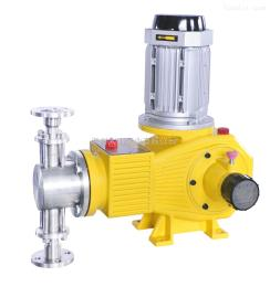 DZ-ZR柱塞式计量泵