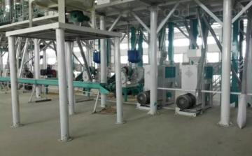 FTA15噸級玉米精加工設備價格