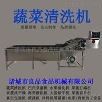 LPQX-1000蔬菜果蔬清洗流水线、气泡清洗机