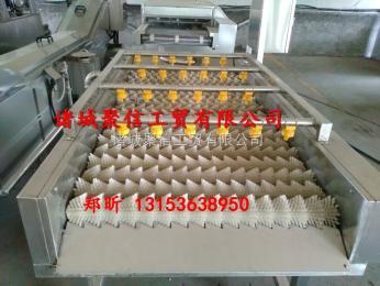 JX-6000鲤鱼清洗机,鲤鱼去鳞清洗机,鲤鱼加工成套设备