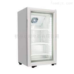 SD-70杭州欧朗70升玻璃门冷冻柜展示冰柜