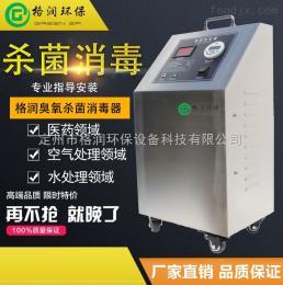 GR-CY-10G小型臭氧发生器