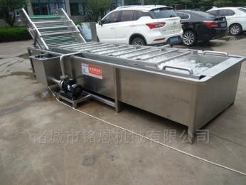 MNXXAZQ自动化粽叶清洗机_粽子生产线