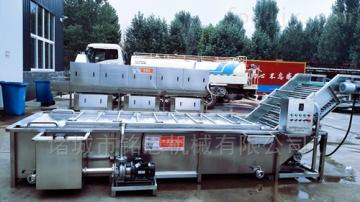 MEQX-63256厂家直销叶菜清洗机