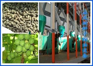 麻風樹種子榨油設備