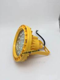 20w防爆LED照明灯 免维护型20w防爆LED灯