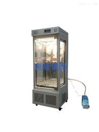DLH-300数显微电脑人工气候培养箱