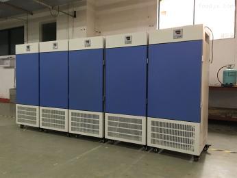 MJ-300F-I带定时霉菌培养箱现货