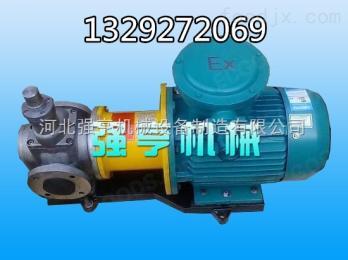 赤峰强亨无泄漏不锈钢圆弧齿轮泵噪音低寿命长效率高