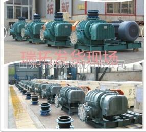 RTSR專業生產逆流冷卻真空泵羅茨風機供應商
