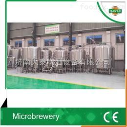 TT-5000L5000L-10000L大型啤酒设备