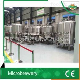 TT-200L200L-1000小型啤酒设备