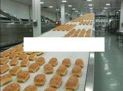 面包網帶輸送機