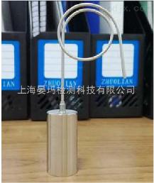 晏玛超高温无线温度验证仪(长探针)