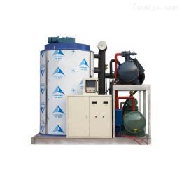 DTI-15T15000公斤食品加工大型片冰机