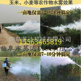 多型号广东灭蚊、消毒灭菌等消杀防疫打药机 烟雾弥雾两用机