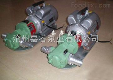 WCB河北齿轮泵厂家供应WCB手提式齿轮油泵