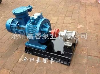 2CY-3/2.5嘉睿供应福建厦门2CY-3/2.5齿轮泵 高压无泄漏齿轮油泵