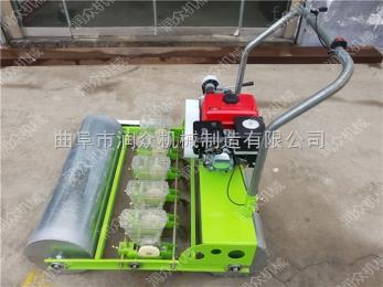 RZ-BZ小白菜种子播种机 手推式蔬菜精播机