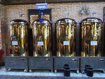 不锈钢500L自酿精酿啤酒设备酿酒罐德国发酵罐500升