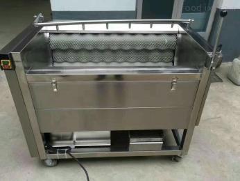 DL-100毛刷式果蔬清洗机、土豆、核桃去皮机