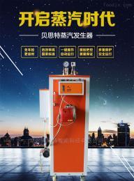 燃油燃气自动蒸汽发生器