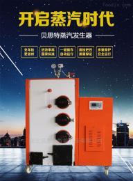 生物质节能蒸汽发生器