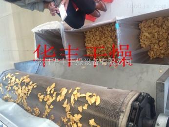 蘋果片專用帶式干燥機