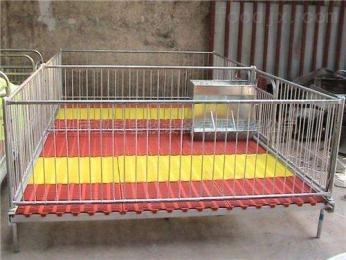 YG-6現代化養豬設備廠家加工定制仔豬保育床