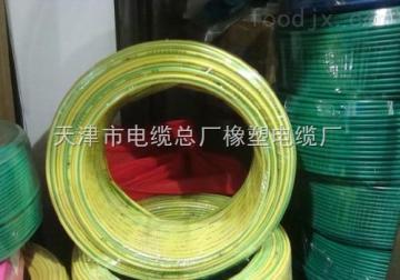 BV達標電纜廠商  BV 1*10  單芯銅塑線300/500